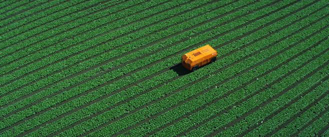 로봇이 야채도 키운다..잡초 제거 AI 로봇 개발1.jpg