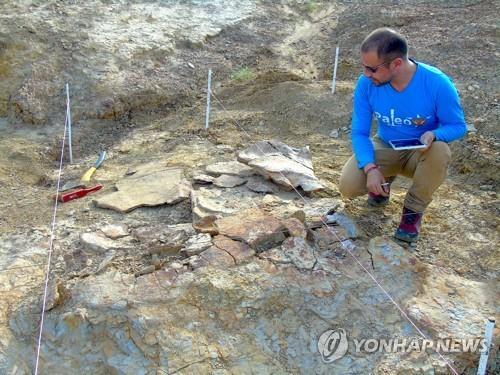승용차만한 초대형 고대 거북도 공룡급 악어가 천적2.jpg