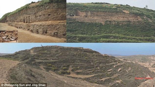 中서 4300년 된 고대 도시 발견..대규모 인신공양 만연.jpg