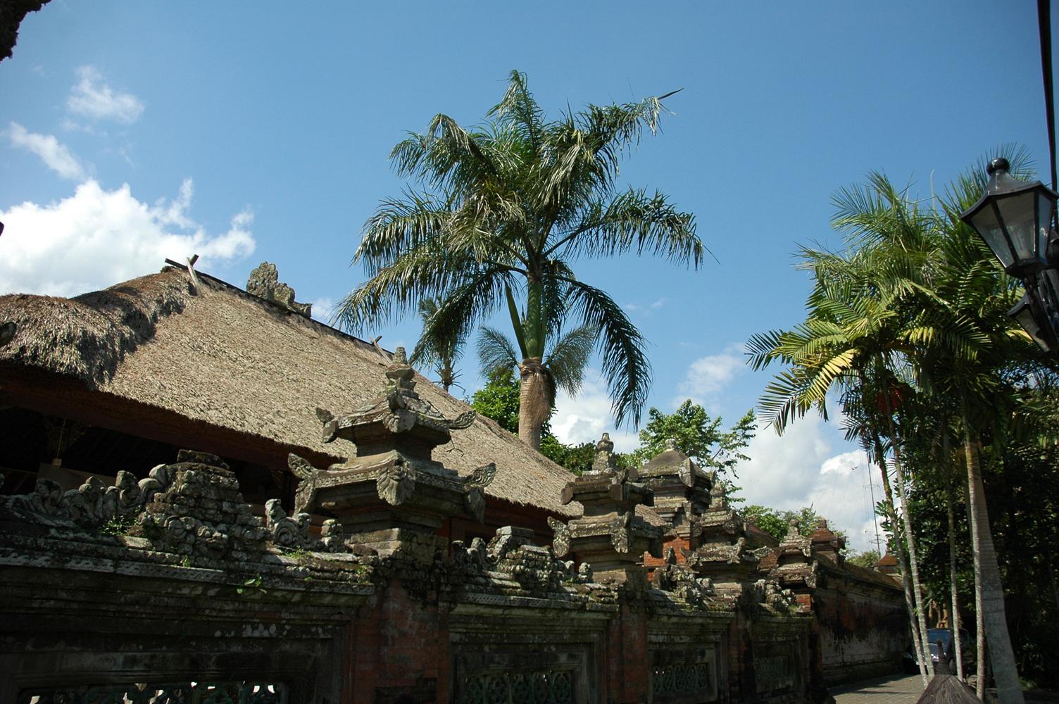 인도네시아 농촌풍경 (12).jpg